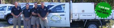 Trade Services Copywriting Australia - Wallaby Pest Control Testimonial